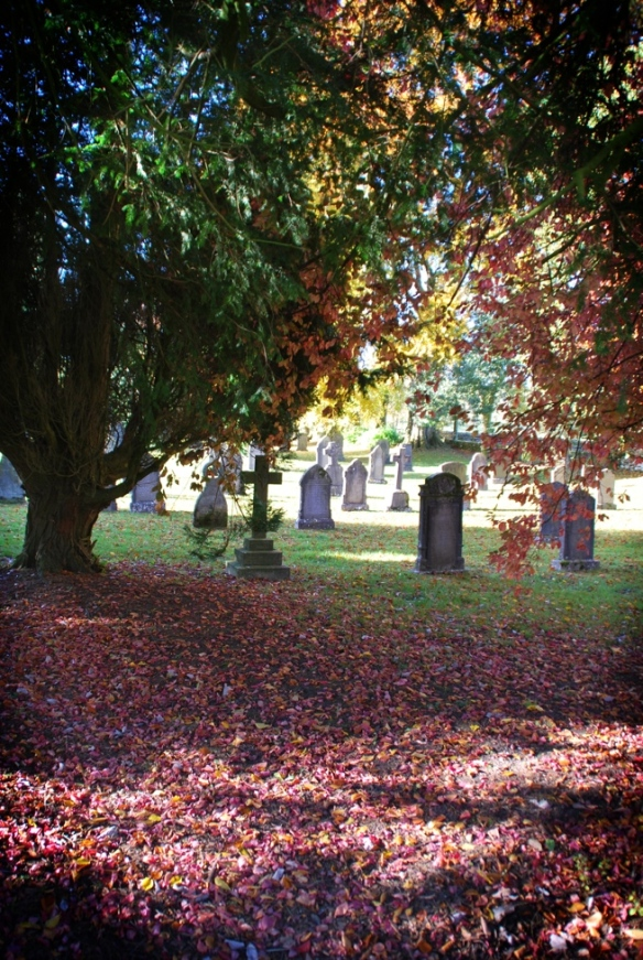A cemetery coloured by dead and dying leaves. Actually, I really had to resist the urge to inspect the graves here: as longer term readers of this blog will know, I have developed a habit of photographing old headstones. I'd already convinced one local seven year old that I was A Bit Weird. No need to make the good people of Maulds Meaburn think that I was also A Lot Creepy.