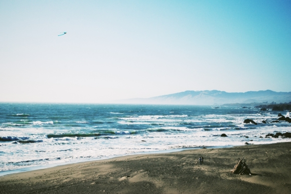 The kite flying that I remember doing as a child consisted mostly of running with the kite held aloft in a desperate effort to get it airborne, then a montage of stunning nosedives once the thing was in the air. In California, the kites just fly.