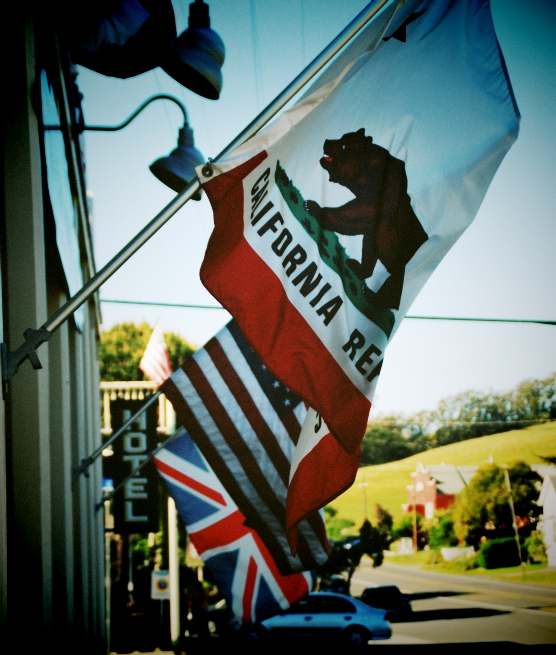 The state animal of California is the grizzly bear. Unfortunately, they've now  all been hunted to extinction in the state, so they don't use real bear fur on the flags anymore.
